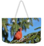 Inquisitive Male Cardinal Weekender Tote Bag