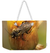 Insect - Bee - Dare To Bee Different Weekender Tote Bag