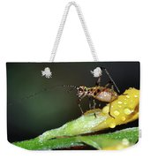Insect And Morning Dew Weekender Tote Bag