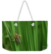 Insect Stain On The Leaf Weekender Tote Bag