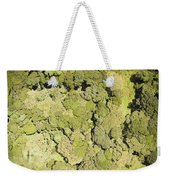 Inside Mount Kilimanjaro National Park Weekender Tote Bag