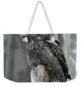Interesting Tawny Frogmouth Perched On A Tree Stump Weekender Tote Bag