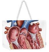 Interior Of Human Heart Weekender Tote Bag