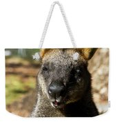 Interview With A Swamp Wallaby Weekender Tote Bag