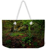 Into The Forest Of Fontainebleau Weekender Tote Bag