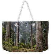 Into The Redwood Forest Weekender Tote Bag