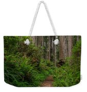 Into The Redwoods Weekender Tote Bag