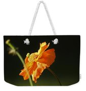 Into The Sunlight Weekender Tote Bag