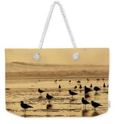 Iquique Chile Seagulls  Weekender Tote Bag