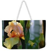 Iris Along The Fence 6731 H_2 Weekender Tote Bag