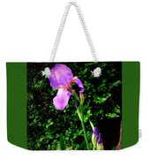 Iris In Sunshine Weekender Tote Bag