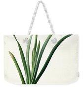 Iris Luxiana Weekender Tote Bag by Pierre Joseph  Redoute