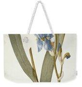Iris Pallida Weekender Tote Bag by Pierre Joseph Redoute