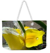Irises Artwork Iris Flowers Art Prints Flower Rain Drops Floral Botanical Art Baslee Troutman Weekender Tote Bag