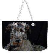 Irish Wolfhound Droc Vi Weekender Tote Bag