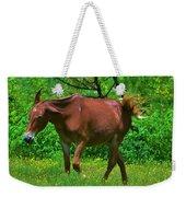 Irritated Horse Weekender Tote Bag