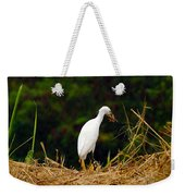 It Was A Bad Day For Bats II Weekender Tote Bag