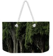Italian Cypress Trees Line A Road Weekender Tote Bag