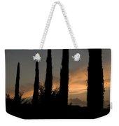 Italian Cypress Trees Silhouetted Weekender Tote Bag
