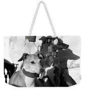 Italian Greyhounds In Black And White Weekender Tote Bag
