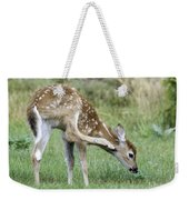 Itchy Fawn Weekender Tote Bag