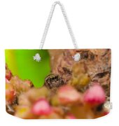 Itsy Bitsy Spider Over Mango  Tree Flowers Weekender Tote Bag
