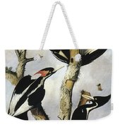 Ivory-billed Woodpeckers Weekender Tote Bag