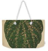 Ivy Leaf, Cissus Porphyrophyllus  Weekender Tote Bag