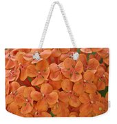 Ixora Moriwaki Weekender Tote Bag