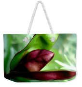 Jack In The Pulpit 4 Weekender Tote Bag