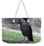Jackdaw - Stare Weekender Tote Bag
