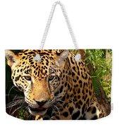 Jaguar Adolescent Weekender Tote Bag
