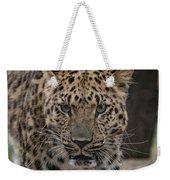 Jaguar On The Prowl Weekender Tote Bag