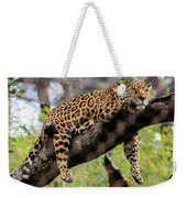 Jaguar Relaxation Weekender Tote Bag