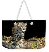 Jaguar Stare Weekender Tote Bag