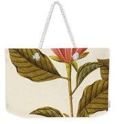 Japanese Bigleaf Magnolia Weekender Tote Bag