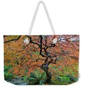 Japanese Garden Lace Leaf Maple Tree In Fall Weekender Tote Bag