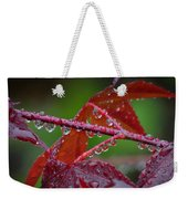 Japanese Maple On A Rainy Day Weekender Tote Bag