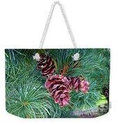 Japanese White Pine Pinecones Weekender Tote Bag
