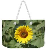 Jarrettsville Sunflowers - The Star Of The Show Weekender Tote Bag