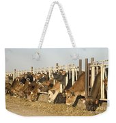 Jersey Cows Feeding Weekender Tote Bag