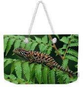 Jeweled Chameleon Furcifer Lateralis Weekender Tote Bag