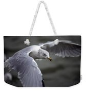 Johnathan Livingston Seagull Weekender Tote Bag