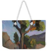 Joshua Tree 2 Weekender Tote Bag