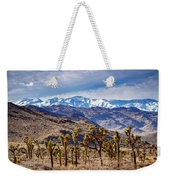Joshua Tree National Park 2 Weekender Tote Bag