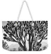 Joshua Trees Bw Weekender Tote Bag