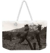 Joshua With Snow Capped Mountain Weekender Tote Bag