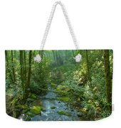 Joyce Kilmer Memorial Forest Weekender Tote Bag