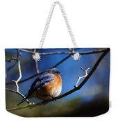 Juicy Male Eastern Bluebird Weekender Tote Bag