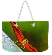 Julia Heliconian Butterfly Spreading Its Wings In Iguazu Falls National Park-brazil  Weekender Tote Bag